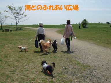blogumihure01.jpg