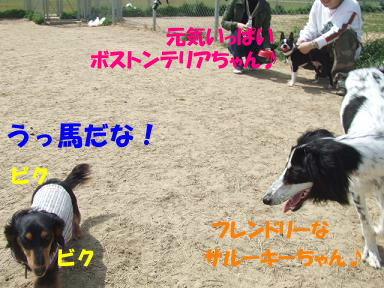 blogumihure02.jpg