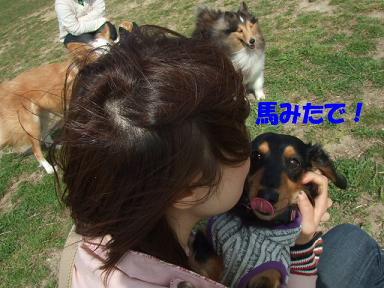blogumihure04.jpg