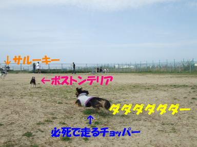 blogumihure05.jpg