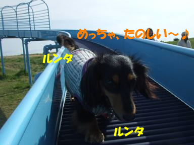 blogumihure09.jpg