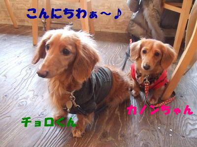 blogwan01.jpg
