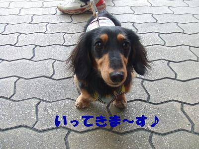 blogwan04.jpg