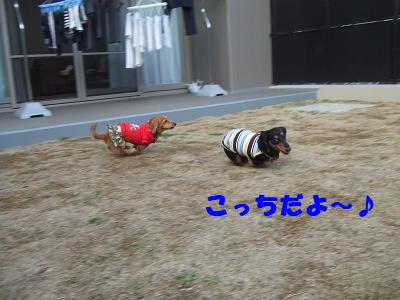 blogwan10.jpg