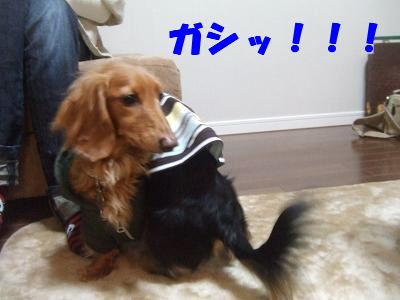 blogwanmama03.jpg