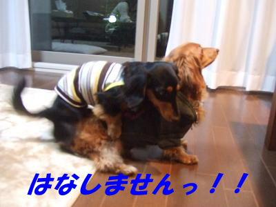 blogwanmama04.jpg