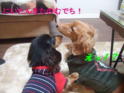 blogwanmama05.jpg