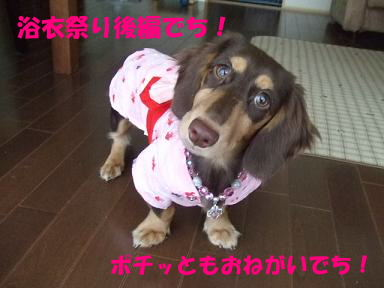 blogyukata01.jpg