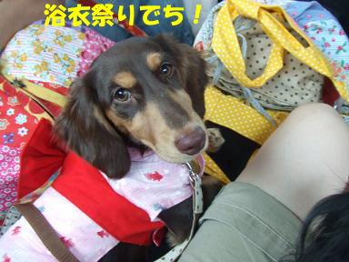 blogyukata02.jpg
