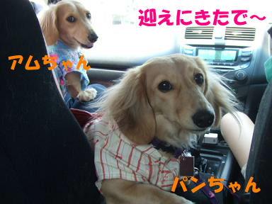 blogyukata03.jpg