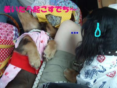 blogyukata05.jpg