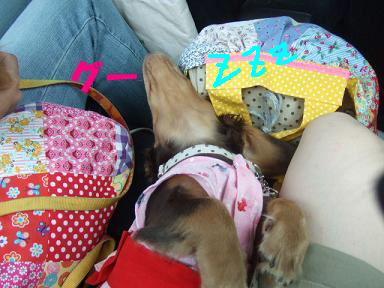 blogyukata06.jpg