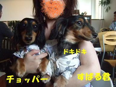 blogyukata10.jpg