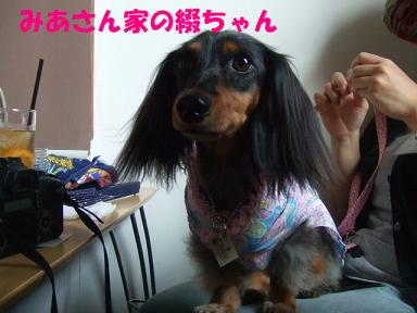 blogyukata11.jpg