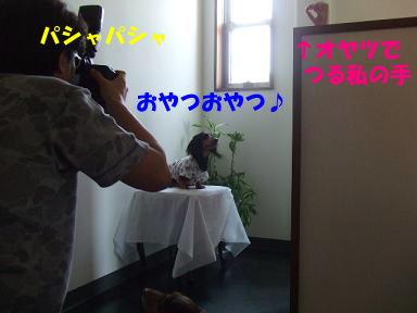 blogyukata14.jpg