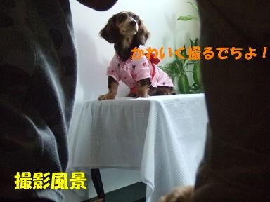 blogyukata15.jpg