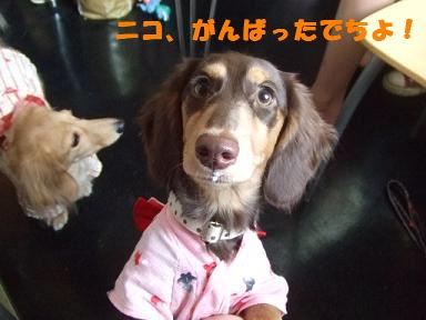 blogyukata18.jpg
