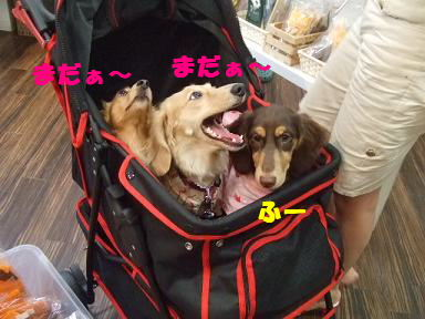 blogyukata19.jpg
