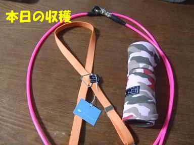 blogyukata22.jpg