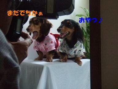 blogyukata24.jpg