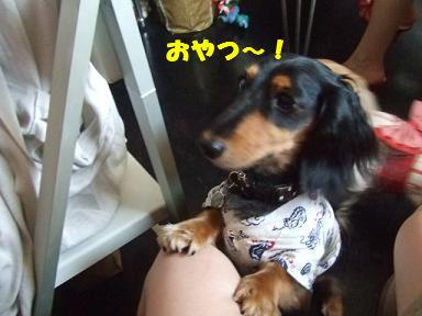 blogyukata26.jpg