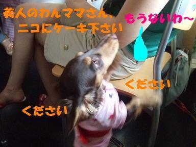 blogyukata27.jpg
