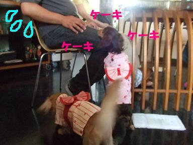 blogyukata28.jpg