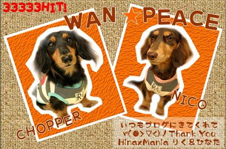 wanpeace2hinaxmania02.png