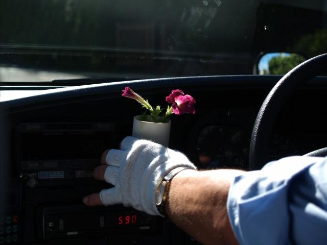 タクシーの運転手さんと花