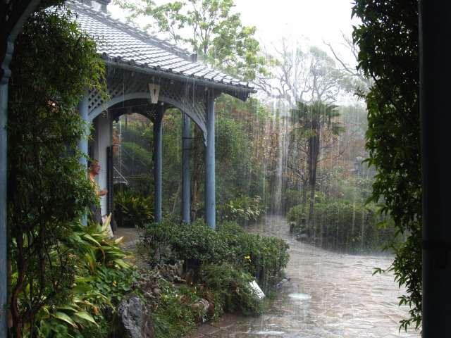 土砂降りの雨宿り