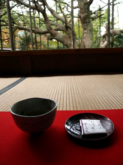 H19.11月 京都2 101