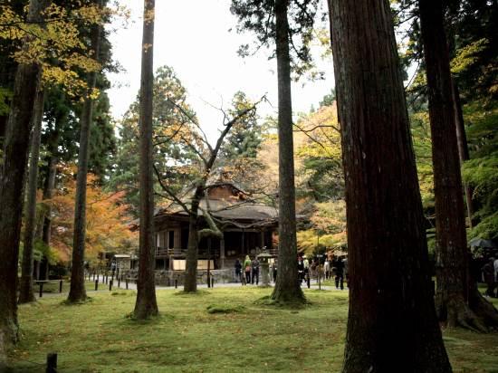 H19.11月 京都2 037