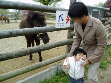 お馬さん、怖いよ~><;
