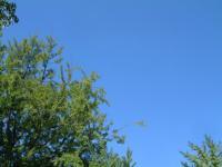 雲はないのか