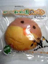 旭山動物園のパン・ペンギン