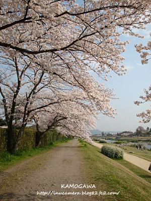 walks_23_8.jpg