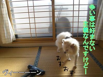 DSCF0031_convert_20100104223138.jpg