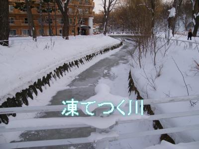 DSCF0414_convert_20100117031859.jpg