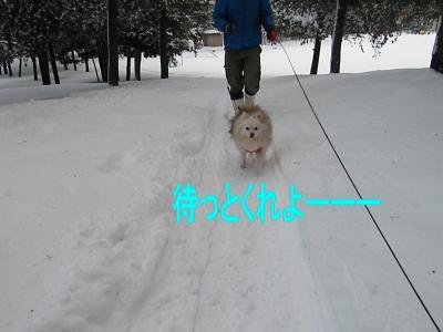 DSCF0435_convert_20100117032051.jpg
