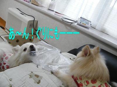 DSCF0440_convert_20100120014549.jpg