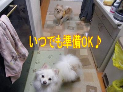 DSCF0638_convert_20100126024509.jpg