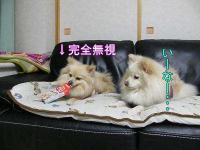 DSCF0686_convert_20100128025249.jpg