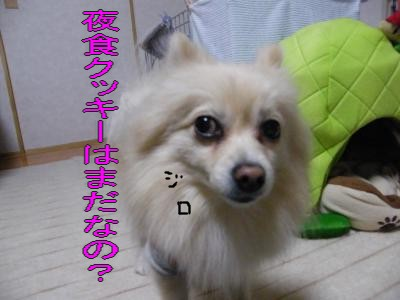 DSCF0781_convert_20100201030356.jpg