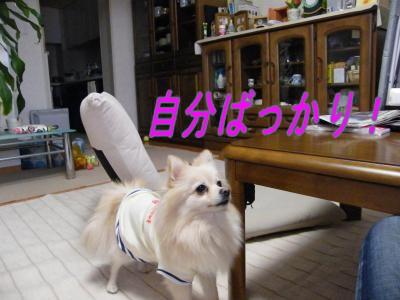 DSCF8869_convert_20091031043430.jpg