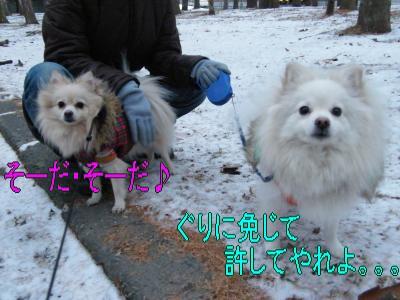 DSCF9180_convert_20091206034148.jpg