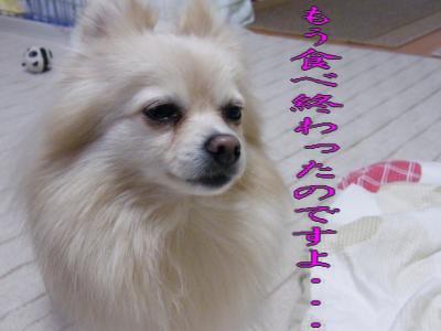 DSCF9594_convert_20091221041210.jpg