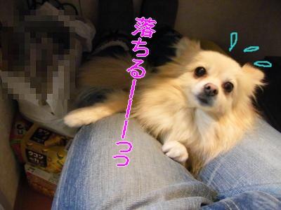 DSCF9679_convert_20091224041134.jpg