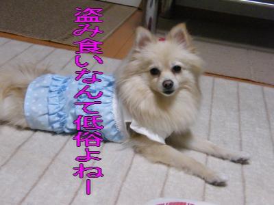 DSCF9918_convert_20100102050247.jpg