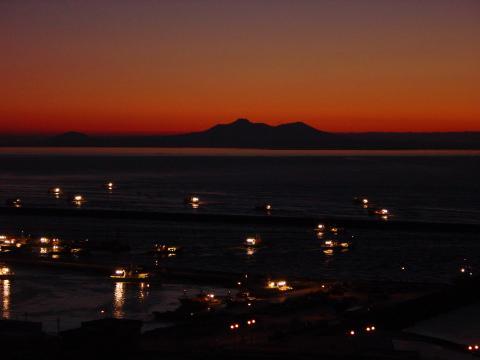 早朝の羅臼港 出航風景