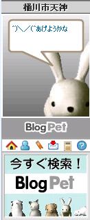 blogpet080501.png
